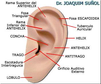 Dr. Edgar Reyes – Cosmetic & Hair Surgery Center